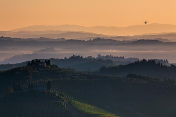 Workflow: Morning Glow At Vineyard