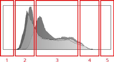 reading histogram for dynamic range
