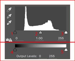 levels adjustments tool