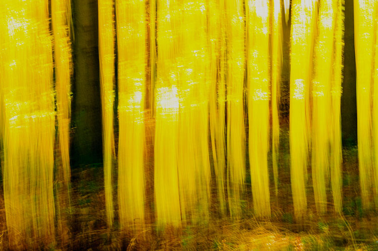 photography tips and tricks icm