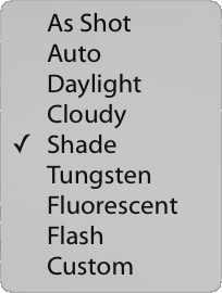 white balance drop-down menu