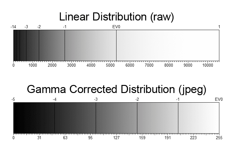 linear gamma dstribution